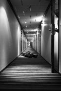 Urban Life –  Exhibition at STROKE 03, Berlin