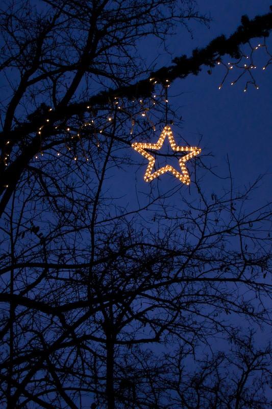 081224-merry-christmas